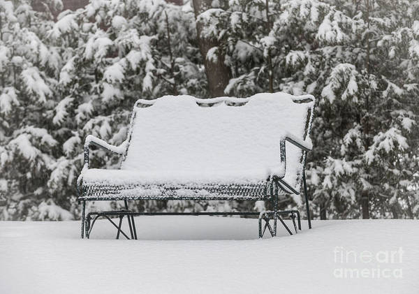 Park Bench Photograph - Snow Covered Bench by Elena Elisseeva