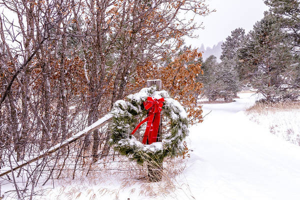 Photograph - Snow Covered Christmas Wreath by Teri Virbickis