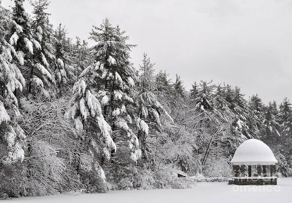 Photograph - Snow Covered Gazebo And Lake by Staci Bigelow