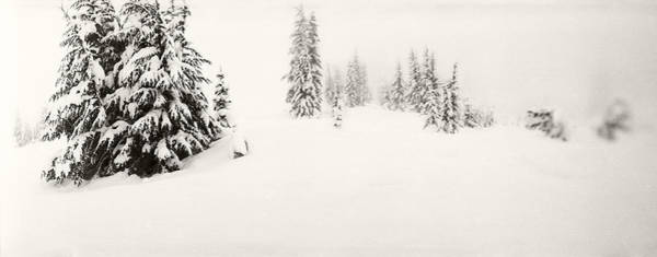 Wall Art - Photograph - Snow Covered Landscape At Stevens Pass by Panoramic Images