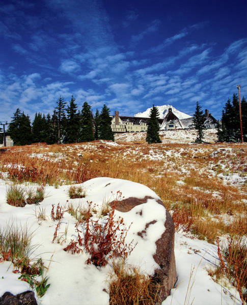 Timberline Photograph - Snow Covered Landscape, Timberline by Panoramic Images