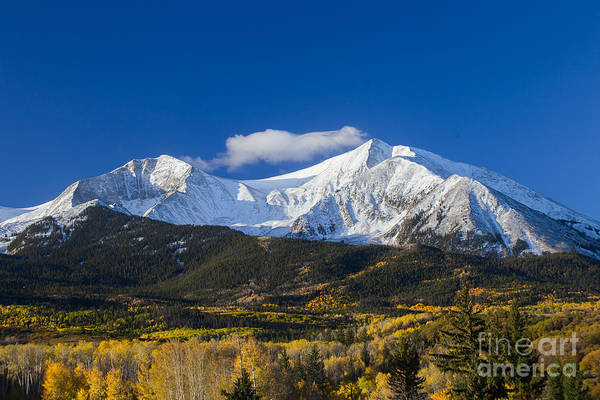 Maroon Bells Photograph - Snow Covered Mount Sopris With Golden Aspen Trees by Bridget Calip