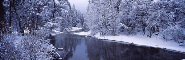 Riverside California Photograph - Snow Covered Trees Along A River by Panoramic Images