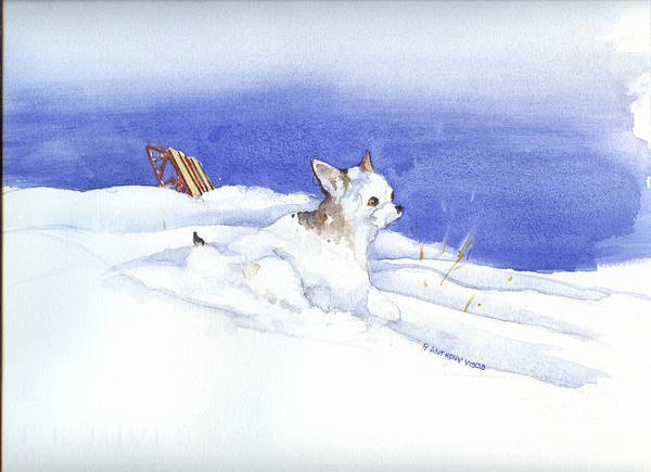 Painting - Snow Dobby by P Anthony Visco