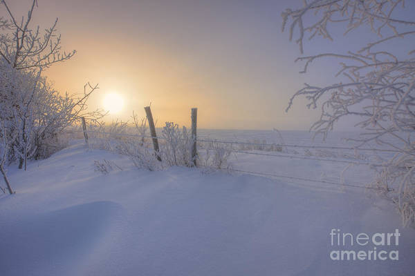 Drift Photograph - Snow Drifts And Barbed Wire by Dan Jurak