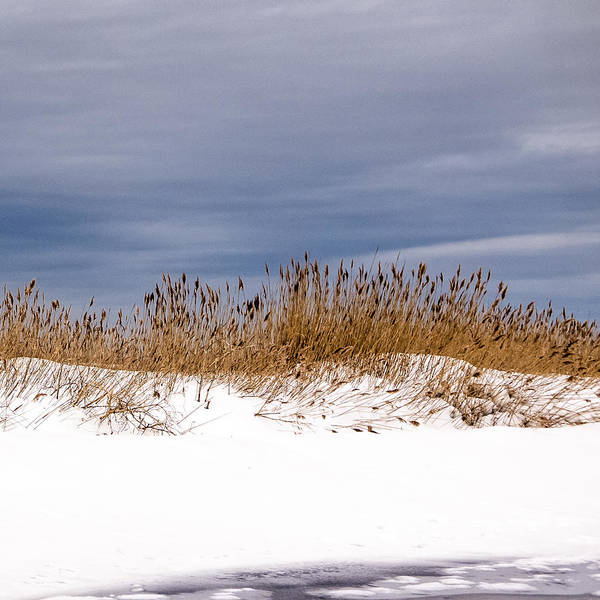 Photograph - Snow Dune by Frank Winters