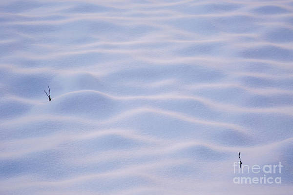 Wall Art - Photograph - Snow Dunes In Yosemite California by Julia Hiebaum