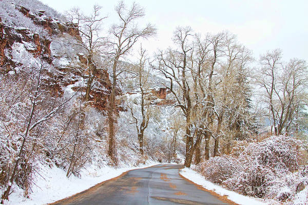 Photograph - Snow Dusted Colorado Scenic Drive by James BO Insogna