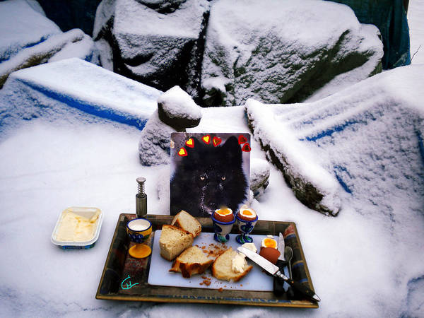 Photograph - Snow Flake And Colette Winter Snow Lunch by Colette V Hera  Guggenheim