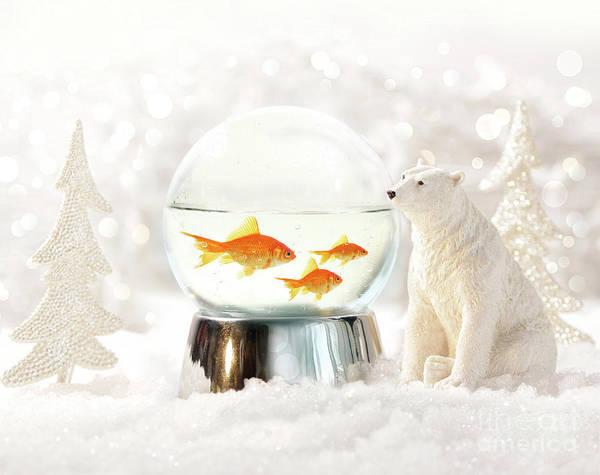 Wall Art - Photograph - Snow Globe In  Winter Scene by Sandra Cunningham
