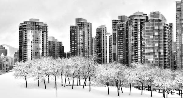 Photograph - Snow In The City by Alicia Kent