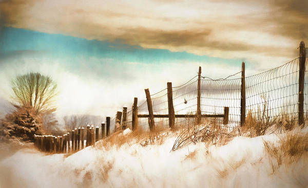Wall Art - Photograph - Snow In The Valley by Kathy Jennings