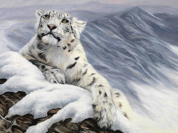 Outdoors Painting - Snow Leopard by Lucie Bilodeau