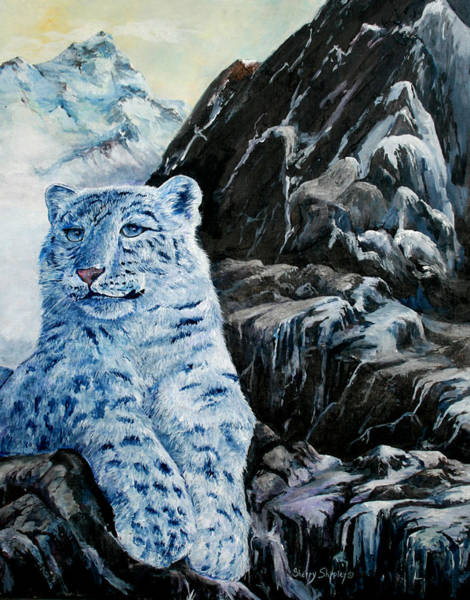 Painting - Snow Leopard by Sherry Shipley