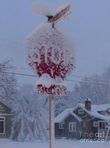 Photograph - Snow Message by Pamela Clements
