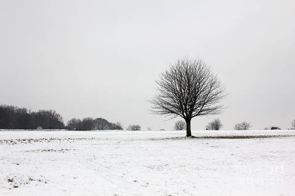 Snow On Epsom Downs Surrey England Uk Art Print