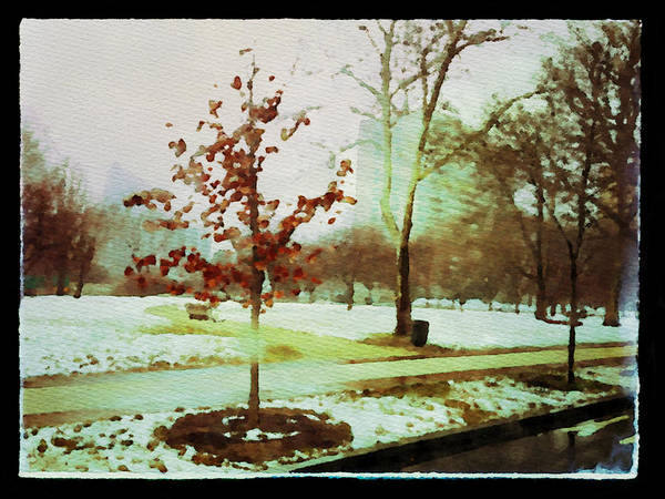 Photograph - Snow On The Parkway by Alice Gipson