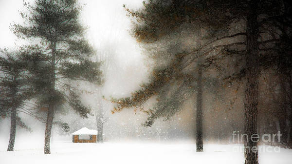 Photograph - Snow Storm Along The Maumee River by Michael Arend