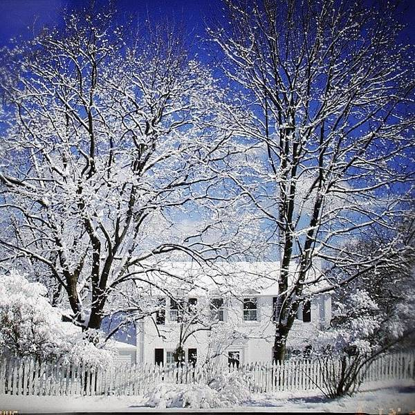 Wall Art - Photograph - #snow #winter #house #home #trees #tree by Jill Battaglia