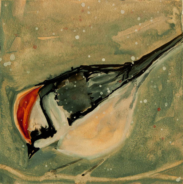 Painting - Chipping Sparrow by Jani Freimann