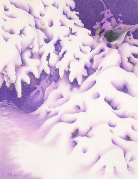 Painting - Snowbird by Elizabeth Dobbs