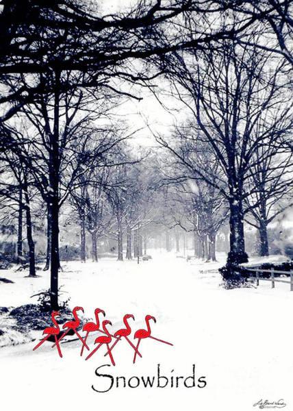 Digital Art - Snowbirds by Lizi Beard-Ward