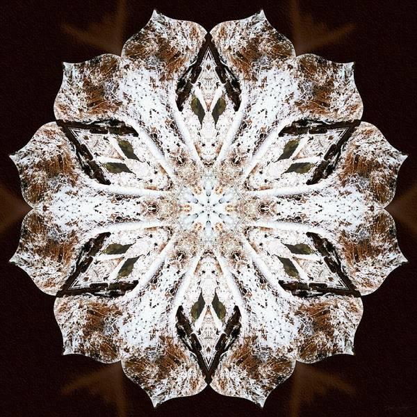 Photograph - Snowbound by Derek Gedney