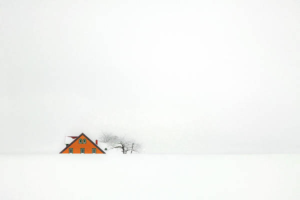 Home Wall Art - Photograph - Snowbound by Rolf Endermann