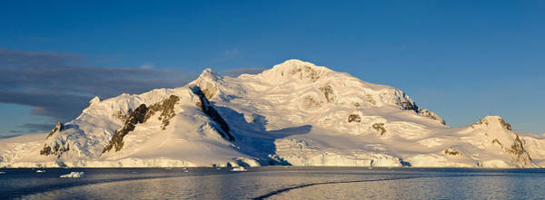 Glacier Bay Photograph - Snowcapped Mountain, Andvord Bay by Panoramic Images