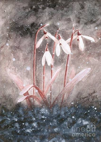 Snowdrop Painting - Snowdrops by Amy M Art Studio