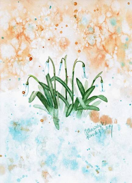 Snowdrop Painting - Snowdrops In The Snow by Amy M Art Studio