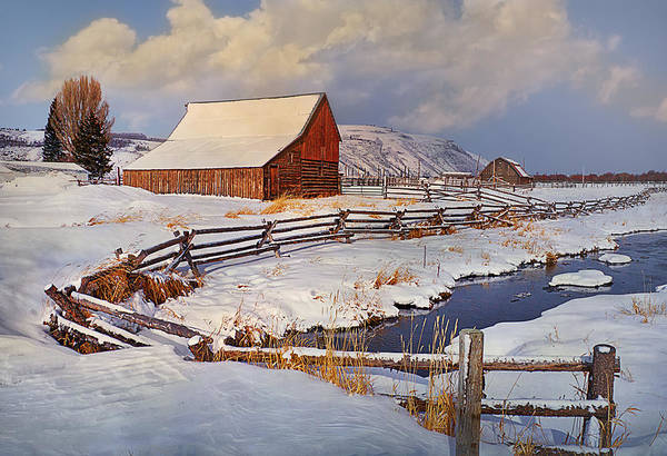 Wall Art - Photograph - Snowed In by Priscilla Burgers
