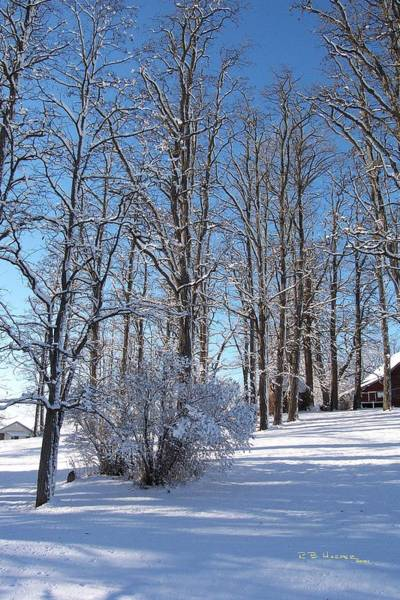 Photograph - Snowfall On The Treeline by R B Harper