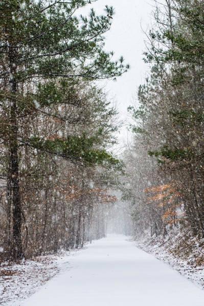 Photograph - Snowfall by Parker Cunningham