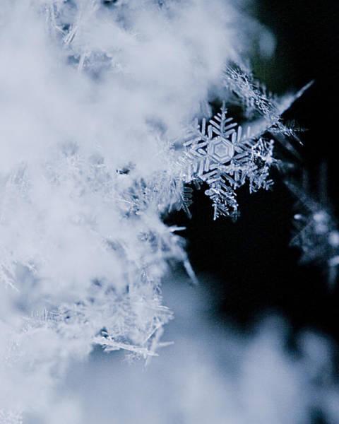 Snowflake Photograph - Snowflakes 5 by Jeff Klingler