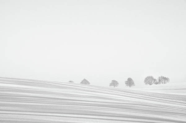 High Key Wall Art - Photograph - Snowlines by Lou Urlings