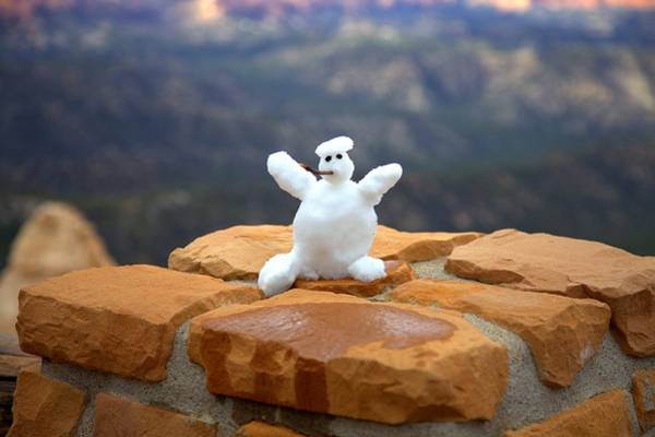 Photograph - Snowman At Bryce by Gordon Elwell