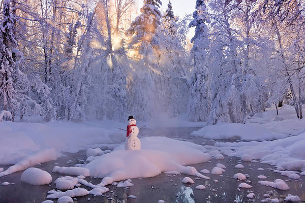 Christmas Photograph - Snowman Standing On A Small Island by Kevin Smith