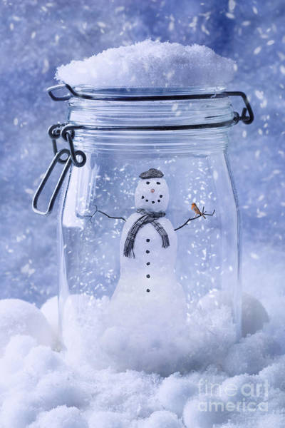Snowman Photograph - Snowman With Robin by Amanda Elwell