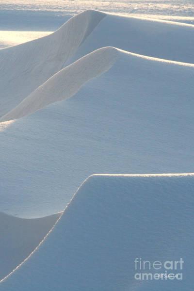 Photograph - Snowscapes 2 by E B Schmidt