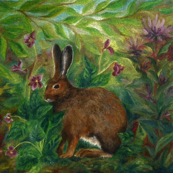 Painting - Snowshoe Hare by FT McKinstry