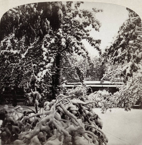 Photograph - Snowstorm, 1862 by Granger