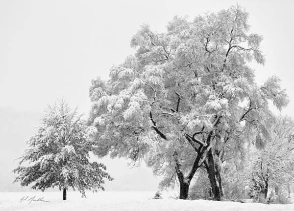 Photograph - Snowstorm Swing by Al  Mueller