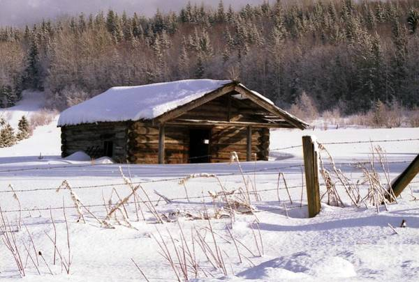 Photograph - Snowy Cabin by Vivian Martin