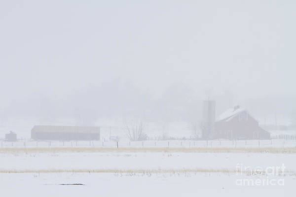 Photograph - Snowy Country View by James BO Insogna