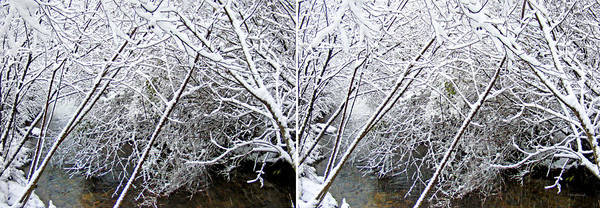 Photograph - Snowy Creek In Stereo by Duane McCullough