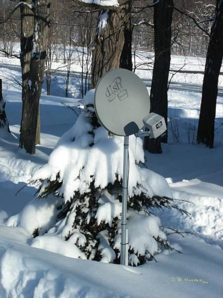 Photograph - Snowy Dish I by R B Harper
