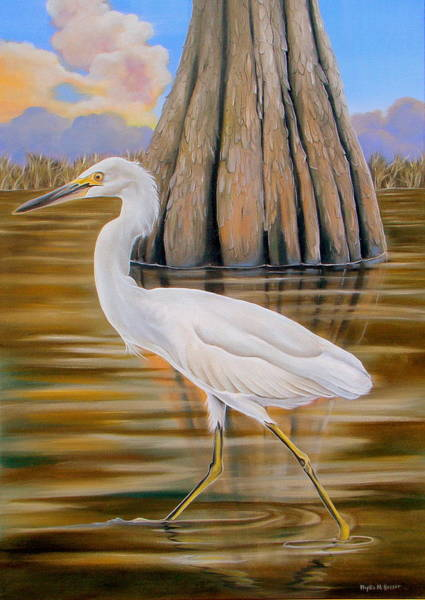 Wall Art - Painting - Snowy Egret And Cypress Tree by Phyllis Beiser