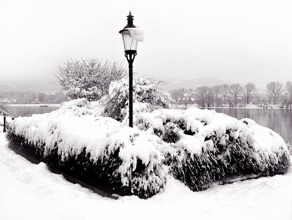 Donau Photograph - Snowy Lamp Post By The River Danube by Menega Sabidussi