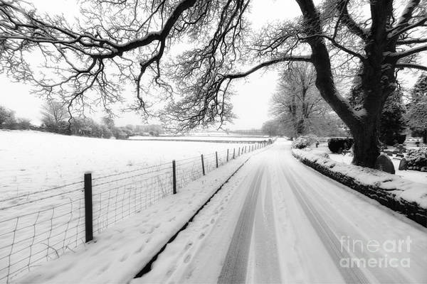 Fence Post Photograph - Snowy Lane by Adrian Evans